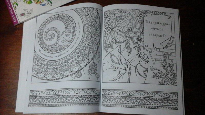 Иллюстрация 19 из 23 для Котомудрости. Раскраска для ...