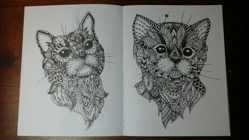 Иллюстрация 7 из 10 для Cats-2. Творческая раскраска ...