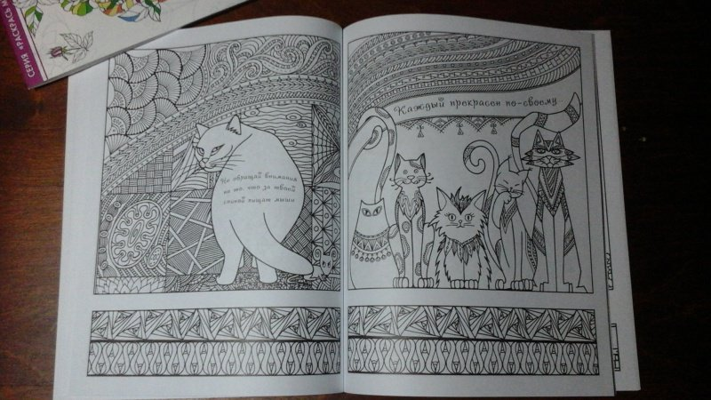 Иллюстрация 20 из 23 для Котомудрости. Раскраска для ...
