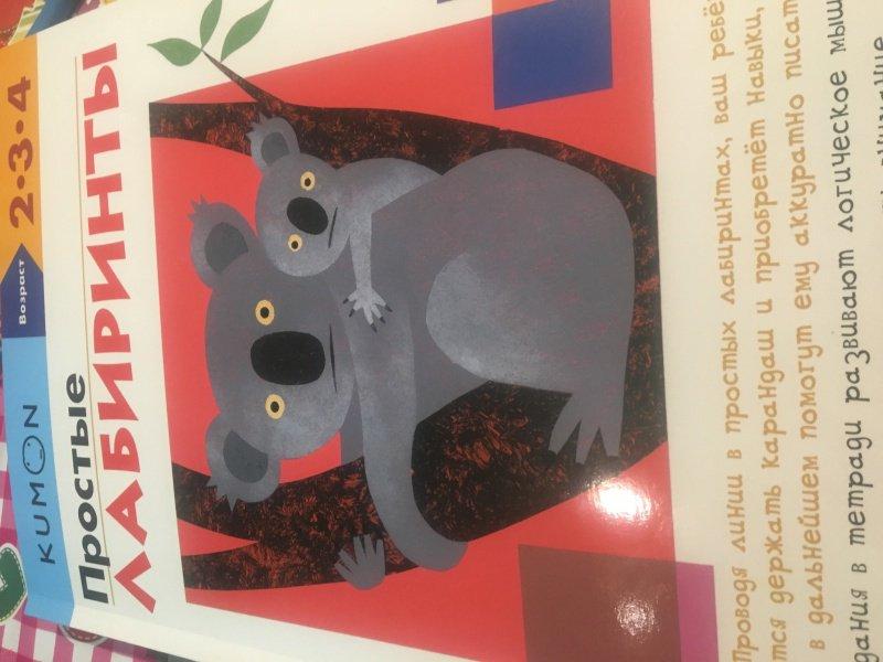 Иллюстрация 52 из 62 для KUMON. Простые лабиринты - Тору Кумон | Лабиринт - книги. Источник: Храбрая  Милана