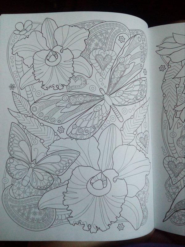 Иллюстрация 21 из 25 для Тропики. Раскраска | Лабиринт - книги. Источник: Сеничкина  Татьяна
