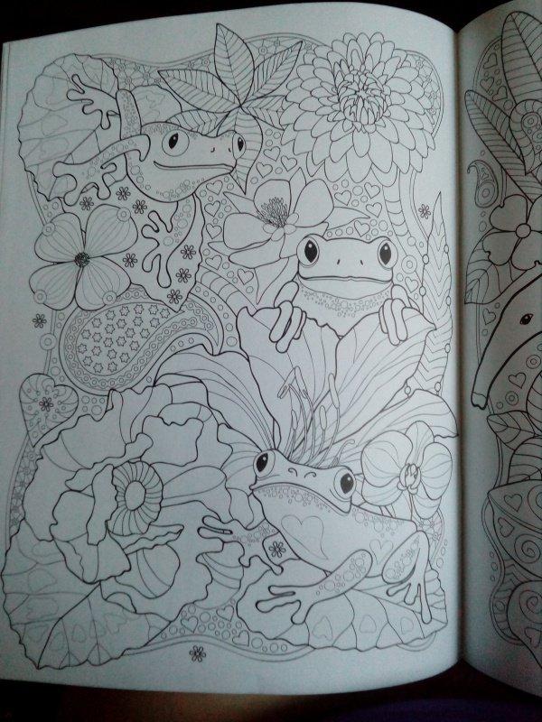 Иллюстрация 25 из 25 для Тропики. Раскраска | Лабиринт - книги. Источник: Сеничкина  Татьяна