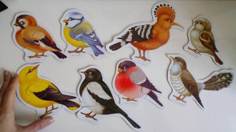 Иллюстрация 1 из 7 для Птицы. Для самых маленьких (1921) | Лабиринт - игрушки. Источник: Оксана К
