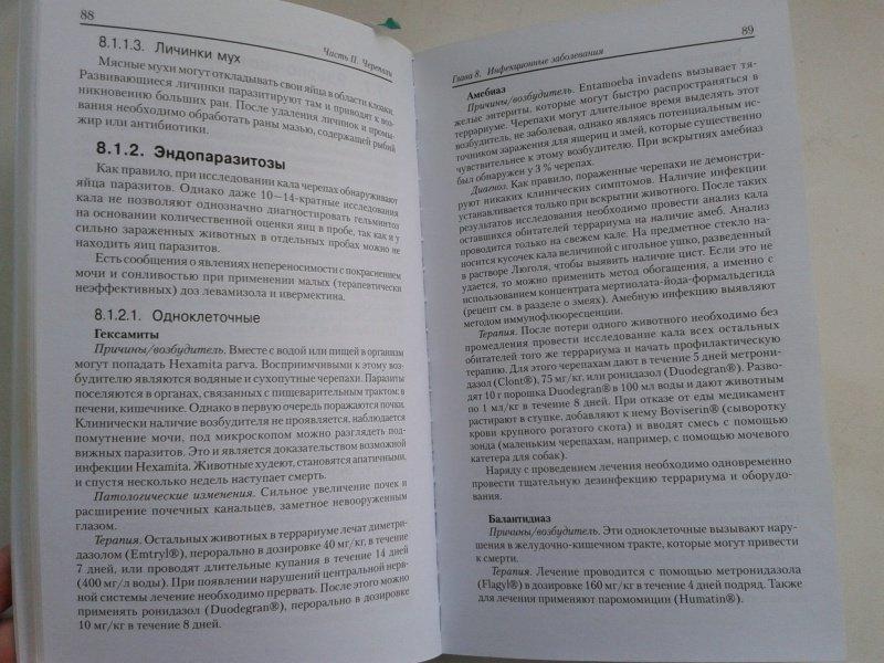 Иллюстрация 15 из 16 для Рептилии. Болезни и лечение - Ярофке, Ланде   Лабиринт - книги. Источник: Лазаренко  Виктория