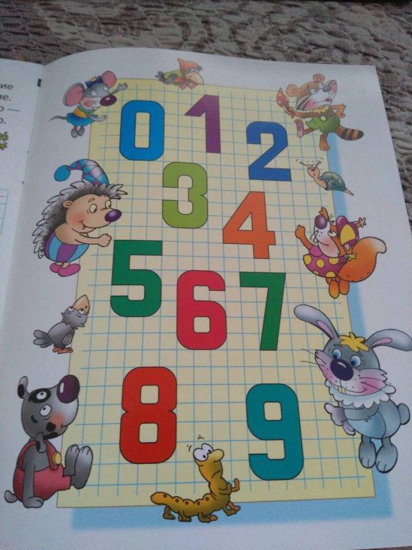 Иллюстрация 24 из 25 для Цифры и знаки. Развиваем навыки письма - Лясковский, Кузьмин | Лабиринт - книги. Источник: ksyundel
