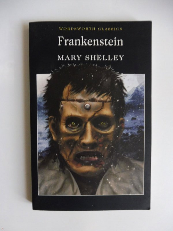 the moral ambiguity in frankenstein a novel by mary shelley Frankenstein (english, paperback) mary wollstonecraft shelley shelley's enduringly popular and rich gothic tale, frankenstein, confronts some of the most feared innovations of evolutionism and science--topics such as degeneracy, hereditary disease, and humankind's ability to act as creator of the modern world.