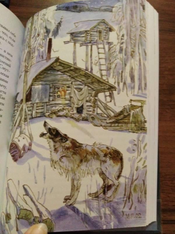 Иллюстрация 29 из 51 для Белый Клык. Зов предков - Джек Лондон | Лабиринт - книги. Источник: Karmina