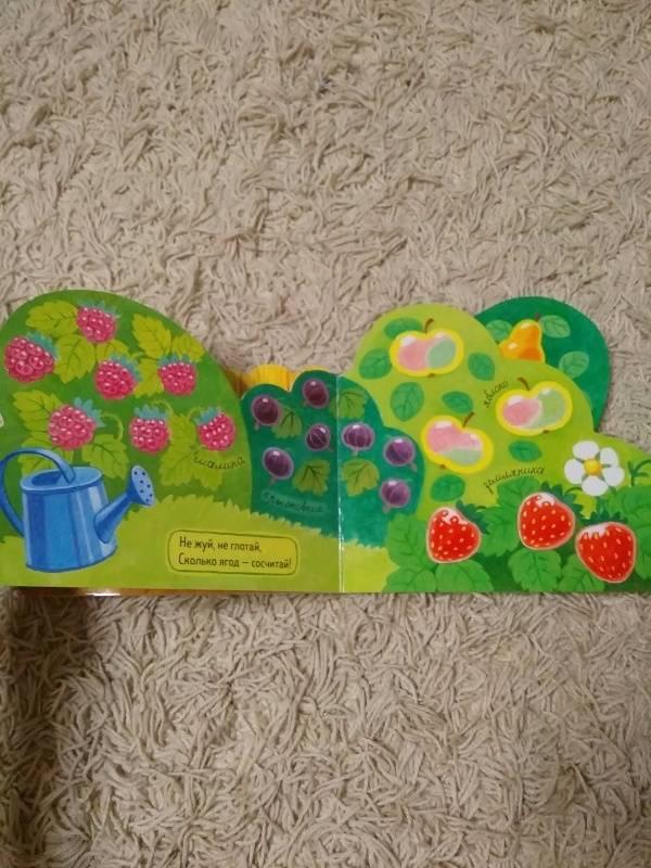 Иллюстрация 19 из 26 для Первые книжки. Огород - Анастасия Орлова | Лабиринт - книги. Источник: Лабиринт