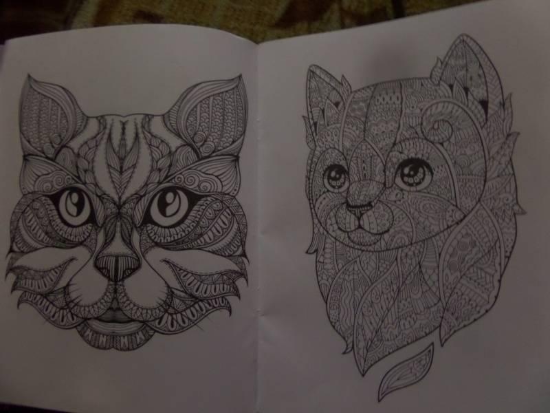 Иллюстрация 5 из 15 для Cats4. Творческая раскраска ...