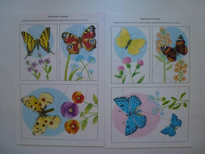Иллюстрация 27 из 34 для Бабочки. Дидактический материал - Татьяна Куликовская | Лабиринт - книги. Источник: Knigolub_IA