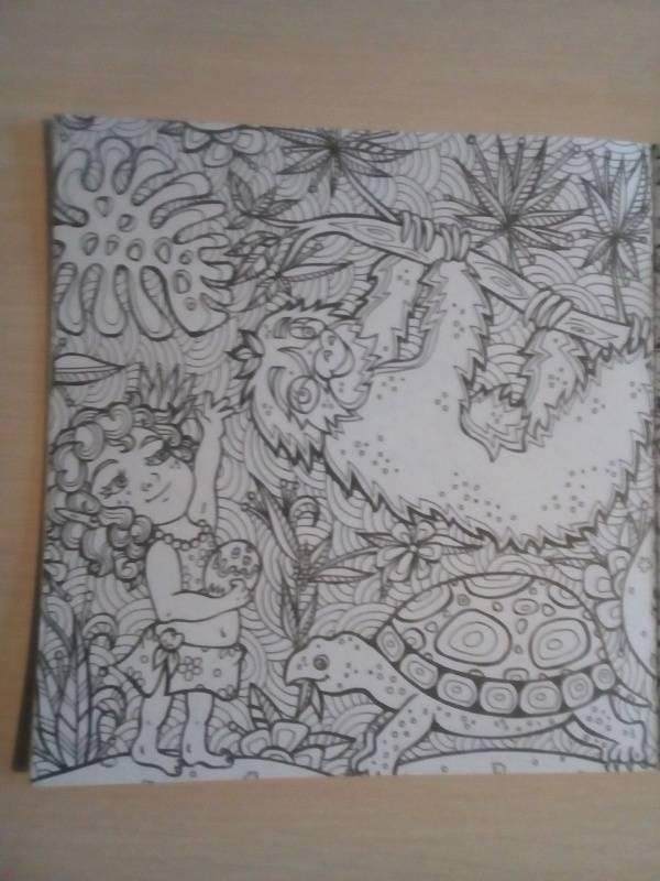Иллюстрация 10 из 29 для Раскраска-антистресс ...