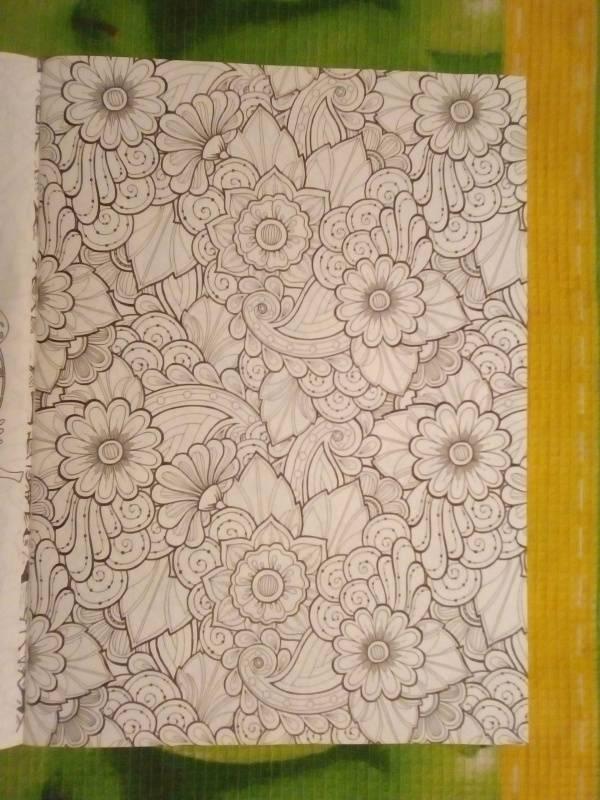 Иллюстрация 20 из 30 для Волшебный сад. Раскраска для ...