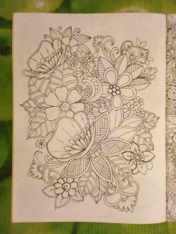 Иллюстрация 13 из 30 для Волшебный сад. Раскраска для ...
