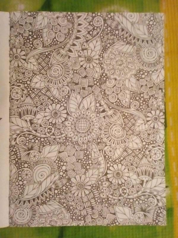 Иллюстрация 14 из 30 для Волшебный сад. Раскраска для ...