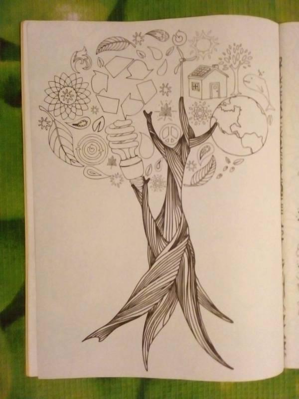 Иллюстрация 15 из 30 для Волшебный сад. Раскраска для ...