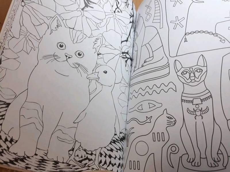 Иллюстрация 68 из 84 для Кототерапия. Мини-раскраска-антистресс для творчества | Лабиринт - книги. Источник: Наталия
