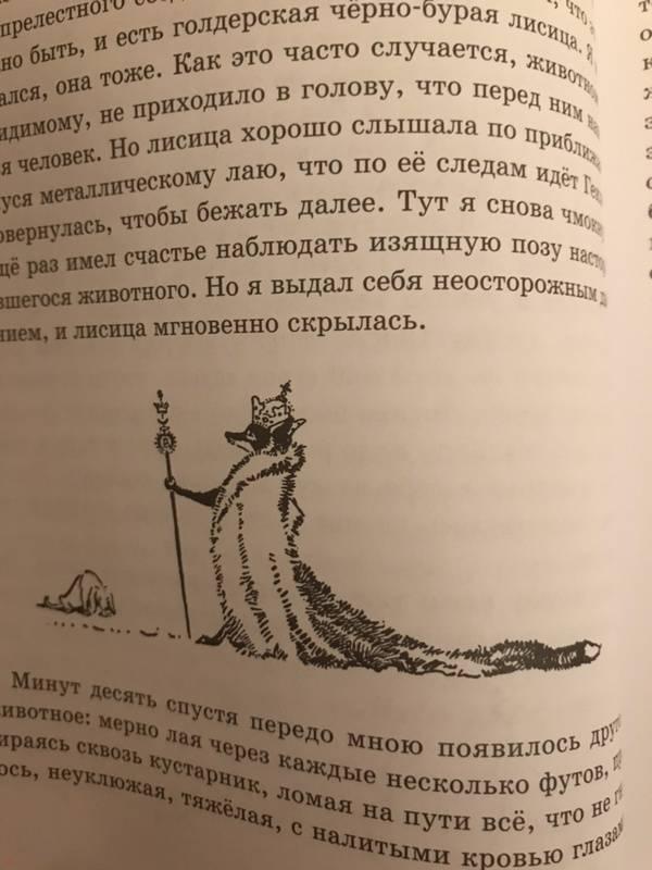 Иллюстрация 66 из 72 для Рассказы о животных. Часть 1 - Эрнест Сетон-Томпсон | Лабиринт - книги. Источник: Маяковская  Виктория
