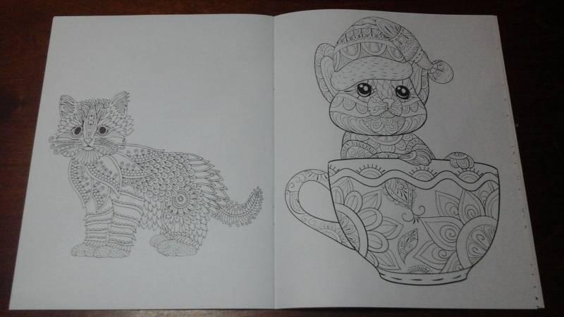 Иллюстрация 11 из 15 для Cats4. Творческая раскраска ...