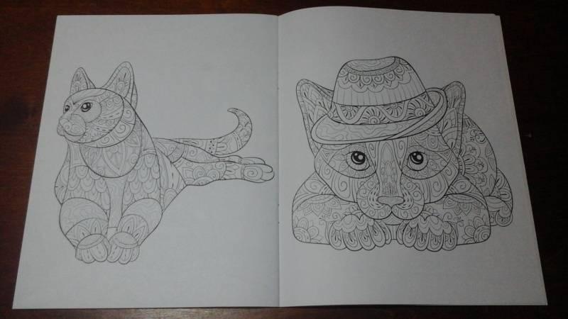 Иллюстрация 13 из 15 для Cats4. Творческая раскраска ...