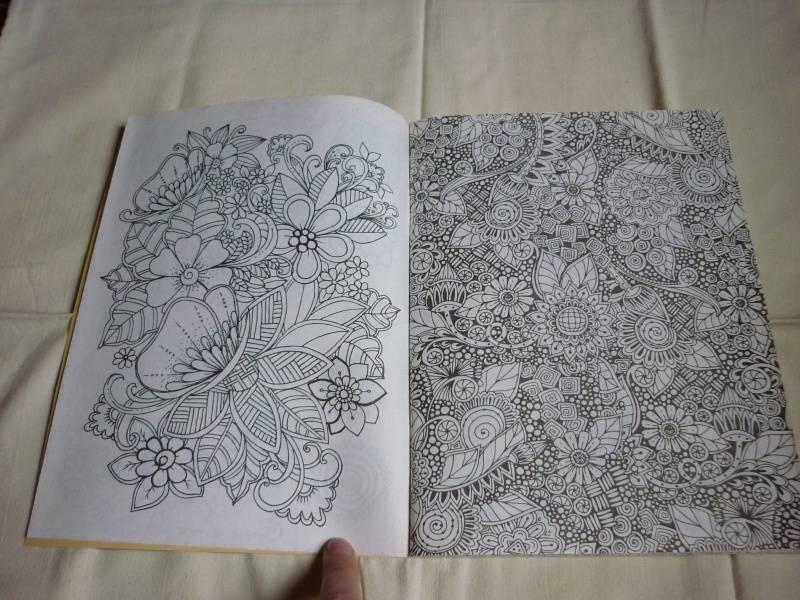 Иллюстрация 26 из 30 для Волшебный сад. Раскраска для ...