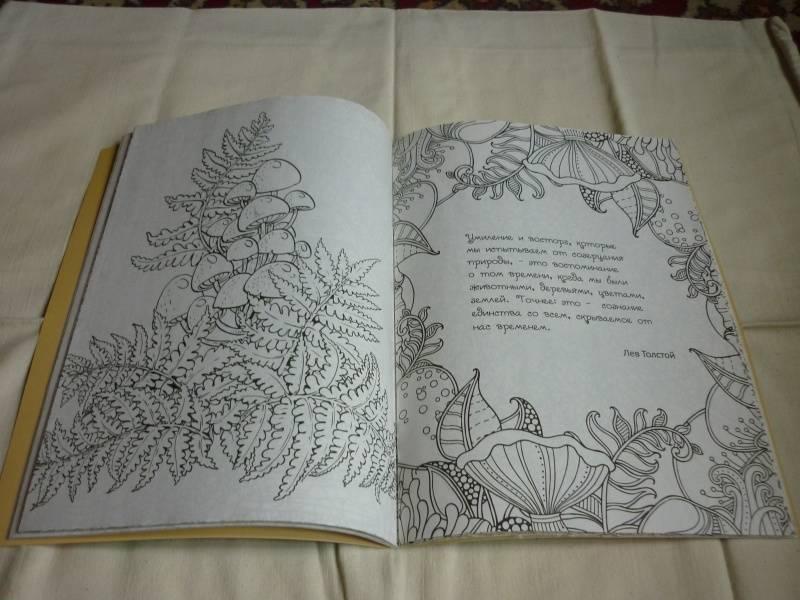 Иллюстрация 29 из 30 для Волшебный сад. Раскраска для ...