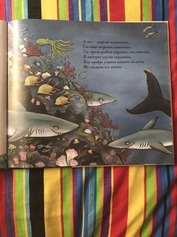 Иллюстрация 126 из 138 для Улитка и Кит - Джулия Дональдсон | Лабиринт - книги. Источник: Семенюта  Анна