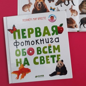 Визуальные словари, фотокниги и карточки. Как разучивать новые слова с малышом