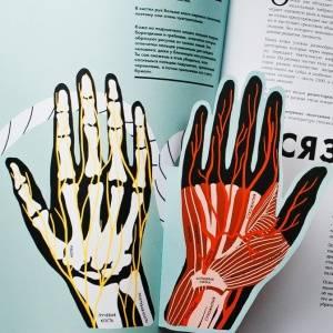 Анатомия. 12 лучших книг о том, как устроен человек