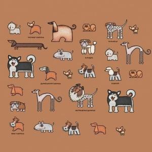 Кошки и собаки в вопросах и ответах