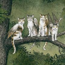 «Крылатые кошки» или «Хоббит»? С чего начать читать фэнтези