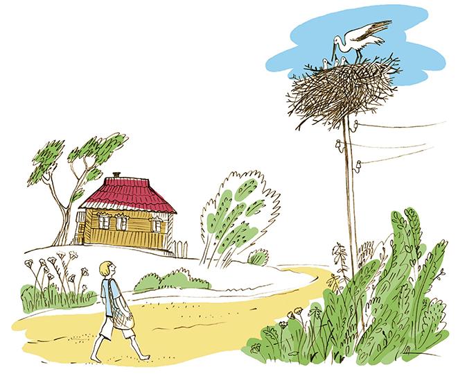 Зина Сурова, «Лето в деревне»