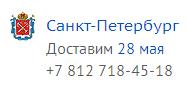 Den goroda Peterburg
