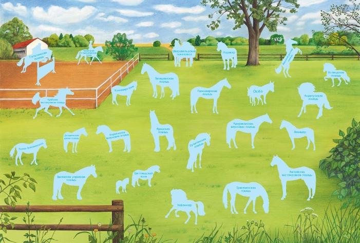 Плакат игра Лошади и пони