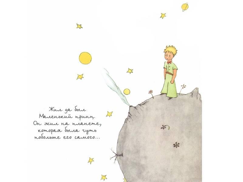 стихи маленький принц шевчук последнее