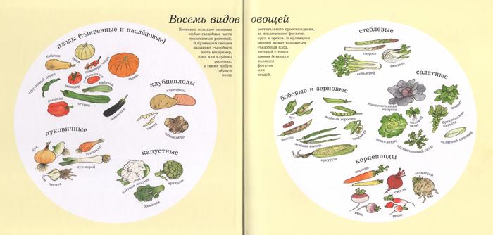 Восемь видов овощей