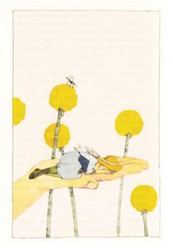Иллюстрация Марион Гедельт к книге Ивы Прохазковой «Бабушка с крылышками»