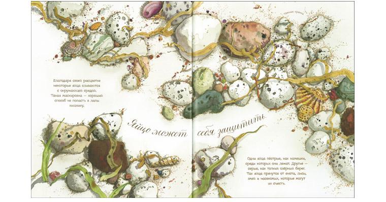 Иллюстрация Сильвии Лонг к книге «Яйцо любит тишину»