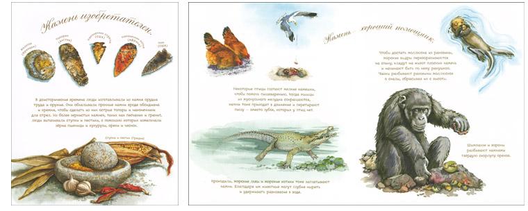 Иллюстрации Сильвии Лонг к книге «У камня своя история»
