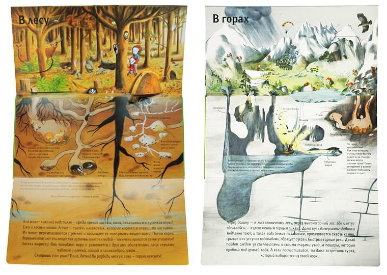 Иллюстрации из книги 1