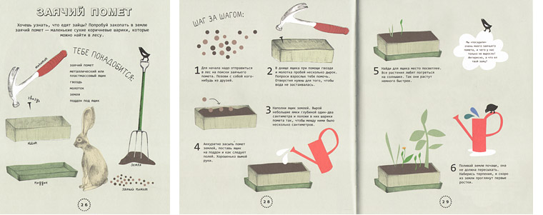 1 Иллюстрации из книги «Огород на подоконнике»