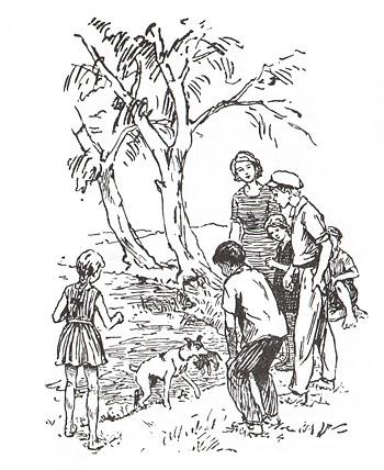 1 Иллюстрация Бориса Винокурова к ениге Анастасии Перфильевой «Пять моих собак»