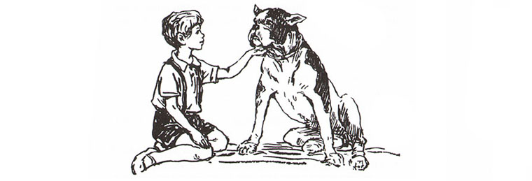 Иллюстрация Бориса Винокурова к ениге Анастасии Перфильевой «Пять моих собак»