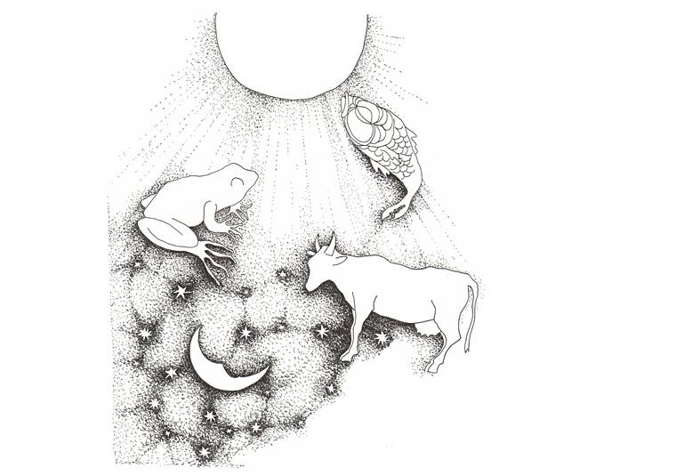 Illustr 3