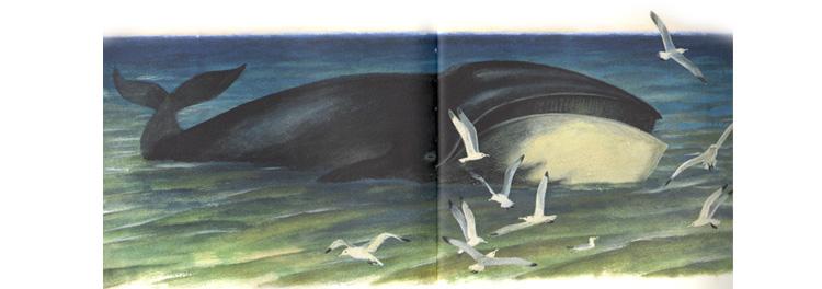 Иллюстрация Николая Устинова к книге Святослава Сахарнова «Кто в море живет»