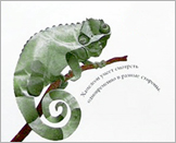 Иллюстрация из книги «Про хвосты носы и уши»