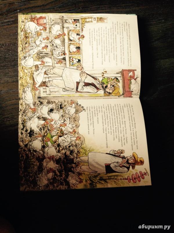 Иллюстрация 44 из 57 для Переполох в огороде - Свен Нурдквист   Лабиринт - книги. Источник: харченко  наталья