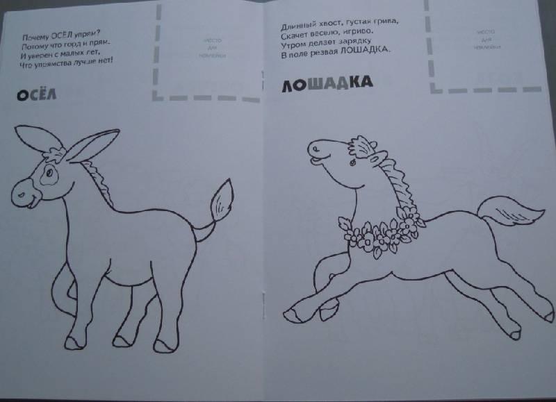 Иллюстрация 7 из 8 для Назови, раскрась, наклей: Домашние животные - Бурмистрова, Мороз | Лабиринт - книги. Источник: Iwolga
