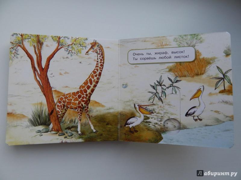 Иллюстрация 34 из 49 для Что у мишки на обед? - Юлия Шигарова | Лабиринт - книги. Источник: Мелкова  Оксана