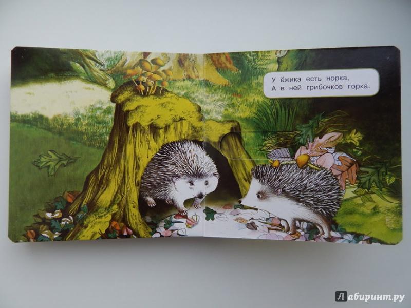 Иллюстрация 36 из 48 для Что у мишки на обед? - Юлия Шигарова | Лабиринт - книги. Источник: Мелкова  Оксана