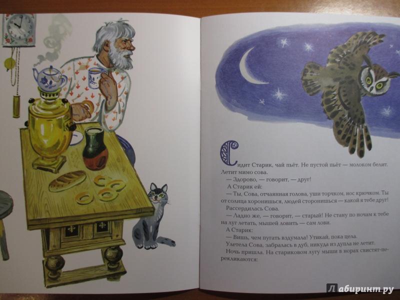 Иллюстрация 12 из 36 для Сова - Виталий Бианки | Лабиринт - книги. Источник: Иванов  Евгений